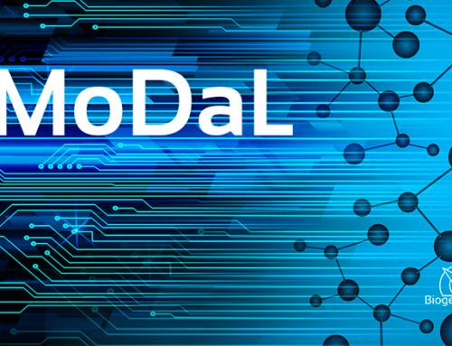Projet MoDal : nouvelle animatrice !