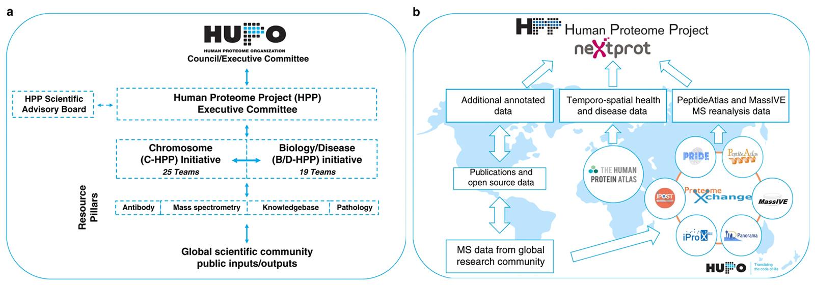 Architecture du Human Proteome Project