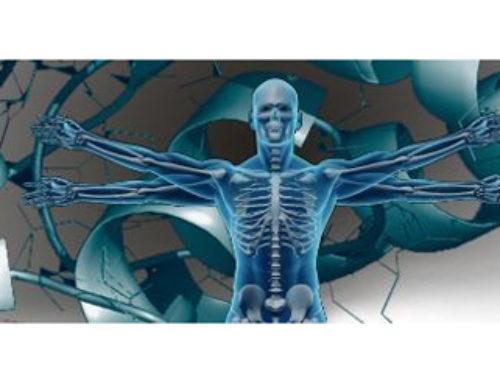 Une première carte du protéome humain publiée par le Human Proteome Project
