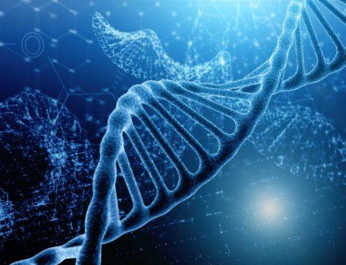 Vers l'analyse génomique « single cell » du Microbiote